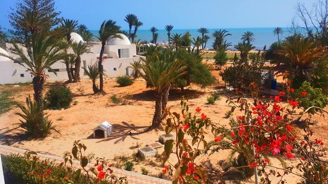 El Mouradi Djerba Menzel Futterplatz