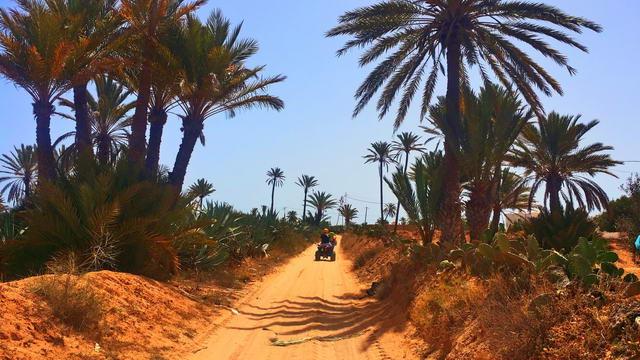 El Mouradi Djerba Menzel Quad-Tour2