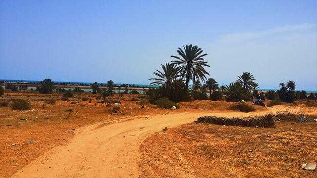 El Mouradi Djerba Menzel Quad-Tour3