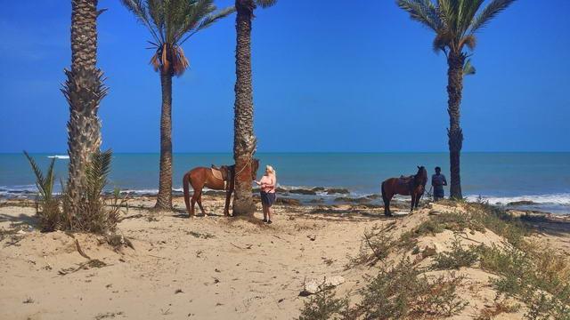 El Mouradi Djerba Menzel Reiten am Strand