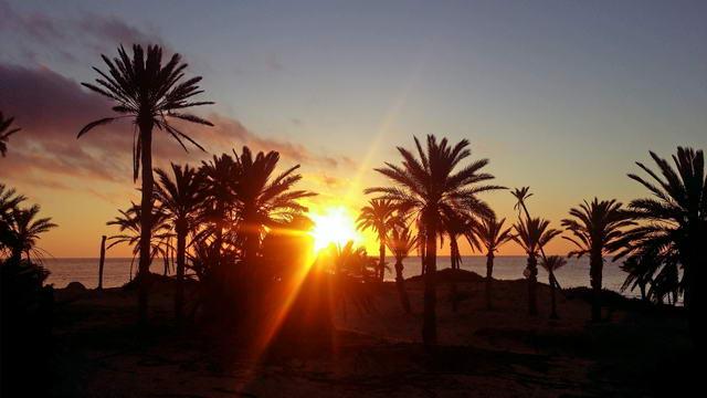 El Mouradi Djerba Menzel Sonnenaufgang am Strand