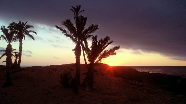 El Mouradi Djerba Menzel Sonnenaufgang